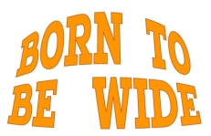 click to visit the Born To Be Wide website
